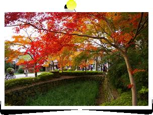 朝倉 秋月城